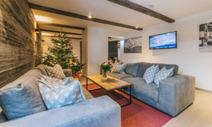Sofa area with Christmas tree behind in Chalet 47