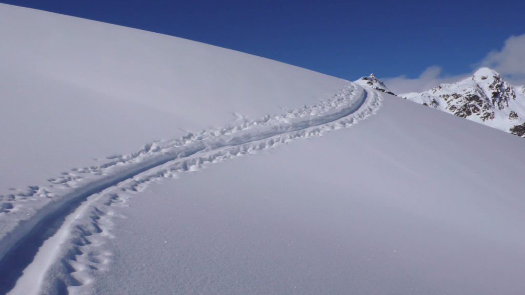 Dreaming of these fresh tracks in the snow post Covid-19